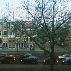 MyView. Morning. 17.02.2015.