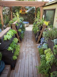 """Vegetable Boardwalk    For a couple who wanted a garage remodel so they can develop their cooking-school-for-kids business, Jamie Durie created a """"vegetable boardwalk"""" as part of the larger makeover. The vertical gardens greatly expand the amount of produce the couple can grow, and edibles are near the kitchen for easy care and harvest in this design by the HGTV'd team"""