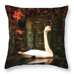 Portrait Throw Pillow featuring the photograph Portrait Of A Swan by Scott Hervieux
