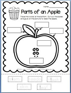 Apples - Print & Go - This print and go set is packed with over 20 printable, no prep, ready to go language arts, math, and science activities with an apple theme! $