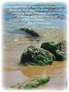 """Fragmento de poema """"El mar"""" del poemario  Callados Silencios de Teo Revilla Bravo.  Fotografía de Karyn Huberman"""
