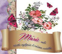 12.9 Mária September, Marvel, Tableware, Dinnerware, Tablewares, Dishes, Place Settings