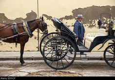A carriage driver in traditional Andalucian hat awaits passengers, Cordoba, Andalucia, Spain. © Peter Eastland / Alamy