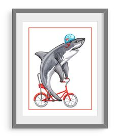 Bkdg Shark Steroids Logo Esport Logo