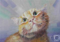 Неприятель Юлия. О чём мечтает рыжий кот?
