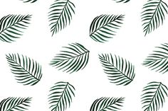 Seamless vector palm tree print by grop on Creative Market