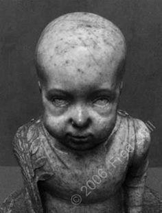Really Scary Dolls - Bing Images Creepy Toys, Creepy Art, Halloween Clown, Vintage Halloween, Funny Picture Quotes, Funny Pictures, Stalker Funny, Scary Baby Dolls, Dark Images