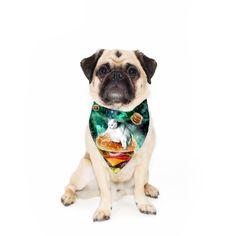 Sloth Pizza Pet Bandana by Shelfies Fraidy Cat, Keep It Cleaner, Bandana, Cute Puppies, Dog Food Recipes, Your Pet, Kitty, Cool Stuff, Pets