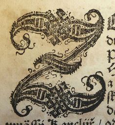 initial Z used by Jiří Melantrich z Aventina of Prague, 1511 to 1580 -- photo by the Penn Provenance Project -- Holy ballsack, this is intricate. Fancy Letters, Initial Letters, Letter Art, Letters And Numbers, Calligraphy Letters, Typography Letters, Illuminated Letters, Illuminated Manuscript, Lettering Design