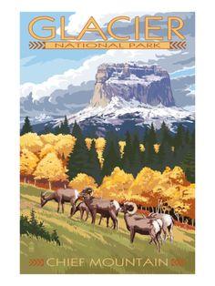 Chief Mountain and Big Horn Sheep - Glacier National Park, Montana