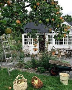 AUTUMN ~ 🍂 there is a distinct autumn chill in the air today. Soon be time to harvest the apples. Our tree is full this year 🍏😍📸 unknown Beautiful Homes, Beautiful Places, House Goals, Dream Garden, Farm Life, Country Life, My Dream Home, Future House, Interior And Exterior