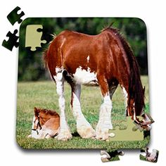 Clydesdale Mare and Foal Jigsaw Puzzle Clydesdale Horses, Horse Gifts, Little Princess, A