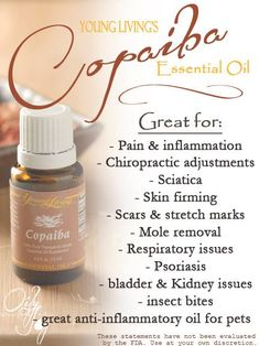 Young Living Essential Oils: Copaiba. Essential Oils by Young Living. For more info and to order please go to www.EssentialOilsEnhanceHealth.com