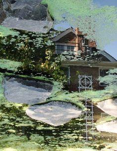 Whitman College pond