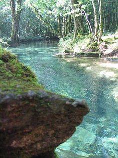 El Cielo, Reserva de la Biosfera, Tamaulipas.