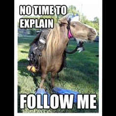New Follow Game - Get More Followers!  Got followers? Like this post and follow the instructions above to get more followers!! I'm aiming for 10,000 followers and would appreciate all of your help, so please share, share, share!  Other