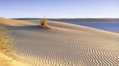 A view across a beautifully rippled sandy beach © National Trust Images / David Noton