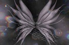 Of Dark Fairytales and Fairy Wings