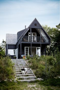 Black exterior with white trim - stone stairs
