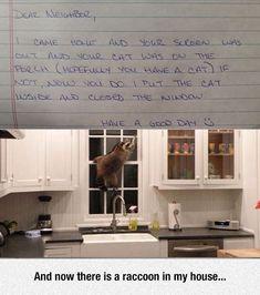 Dear Neighbor, I Solved Your Problem