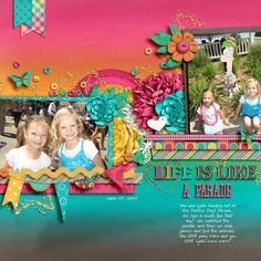 Like is Like by Heather Roselli & Meghan Mullens Template by Le Pingouin Designs