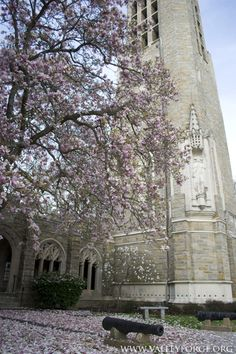 Washington Memorial Chapel at Valley Forge National Historical Park in the #spring. #ValleyForge www.valleyforge.org