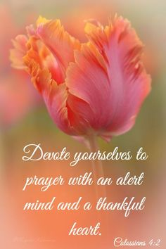 Prayer Daily: Devote yourselves to prayer with an alert mind a thnkful heart
