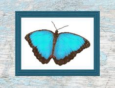 Light Blue Butterfly Instant Download Cross Stitch Pattern | Etsy Dmc Floss, Blue Butterfly, Different Fabrics, Gifts For Friends, Cross Stitch Patterns, Light Blue, How Are You Feeling, Black And White, Prints