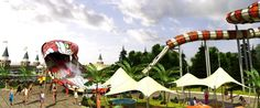 Opening Soon - Cobra Kingdom and Hybrid Dragero The Visitors, News Articles, Attraction, Aquarium, Fair Grounds, Industrial, Museum, Vacation, Park