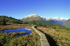 Read Ten of New Zealand's most scenic day hikes