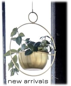 Home   At Home Living House Doctor, Plant Hanger, Home And Living, Terrarium, Wreaths, Duński Design, Garden, Plants, Hangers