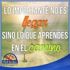 """""""Lo importante no es llegar sino lo que aprendes en el camino"""" #FraseDelDía #Motivación"""