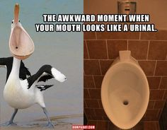 Funny Pictures – 43 Pics