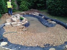 Wildlife Pond In Esher Surrey Von Claudia De Yong Designs Re