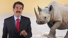 """Here's some interesting ReasonTV commentary by John Stossel about how rhinoceroses can be saved from extinction by allowing people to farm them and/or produce artificial horns. Indeed, whenever we own things (whether herds of animals or patches of land), we're more prone to care for those things well, unlike whenever they're """"up for grabs"""" to the first taker. But such practices are opposed by radical environmental groups, which dislike allowing people to own animals and/or consume them."""