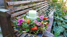 Plants, Ideas, Flora, Plant