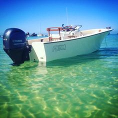 Breakfast on the beach anyone? Floating in skinny water on the gin clear edge of Moreton island #wildbanks #woodenboat #woodenboats #woodenboatsarebetter #woodoftheday #SeeWhatsOutThere #getoutside #ilovewhereilive #islandlife #baylife #saltlife #myboat #mybackyard #adventure #outdoor #outdoors #handmade #normanrwrightandsons #moretonisland #goodmorning #greatday #saltwaterflyfishing #flyfishing #fishing #skinnywaterculture by wild_banks