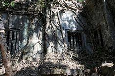 Beng Mealea (60 km from Angkor), Cambodia