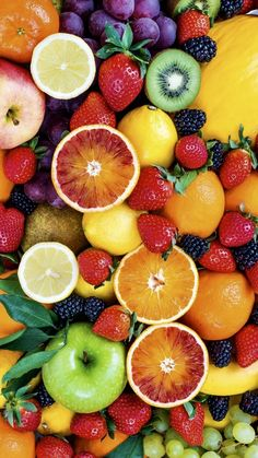 A Rainbow Of Colorful Fruit Collection