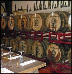 San Sebastian Winery - St. Augustine... awesome wine testing