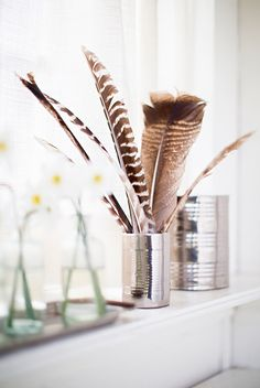 feathers in a tin can