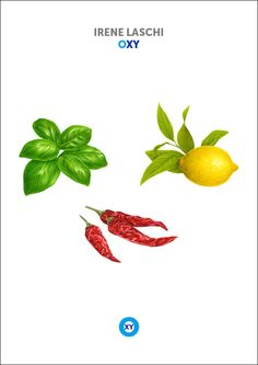IRENE LASCHI / Fruits & Vegetables Illustration / @ : oxy-illustrations@orange.fr