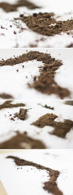 Mizuno Trail - charles faria › cw