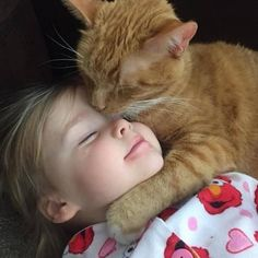 It's been an ongoing battle of cat vs dog for centuries. But what if cats weren't just amazing companions who you could stroke for hours, they can also improve your health. Baby Animals, Funny Animals, Cute Animals, Kittens Cutest, Cats And Kittens, Cute Kids, Cute Babies, Gato Animal, Gato Gif