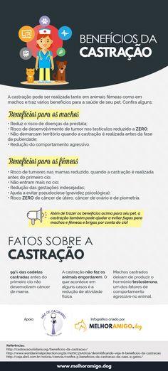 Infográfico com os benefícios da castração #cachorro #cão #pet