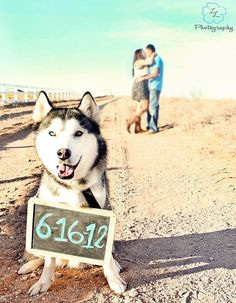 one of our save the date pictures   taken by myself and family. =]