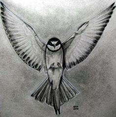 How to Draw a Bird | How to Draw a Realistic Bird, Draw Real Bird, Step by Step, Birds ...