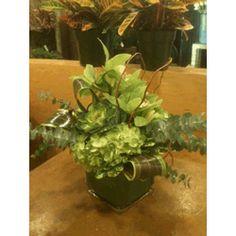 Green Cymbidium, Green Hydranea, Green Succulent and Eucalyptus in a Cube