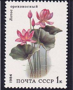 1984  Scott No 5251  Aquatic Plant Lotus