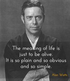 Welcome, I once went by Bodhi, but now I go as Shinyo. I'm a Buddhist minister, a major in Philosophy, and a tea snob. Wisdom Quotes, Quotes To Live By, Life Quotes, Change Quotes, Attitude Quotes, Spiritual Quotes, Quotes Quotes, Qoutes, Great Quotes